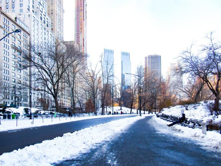 紐約之五:中央公園