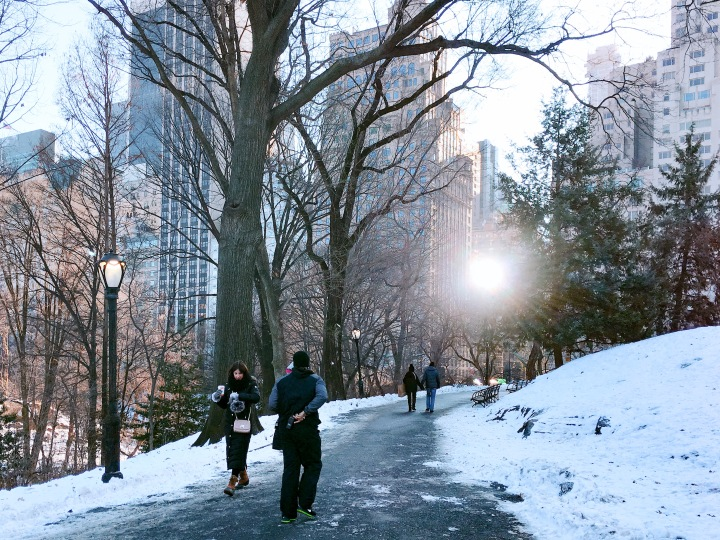 Central Park Walking Trail